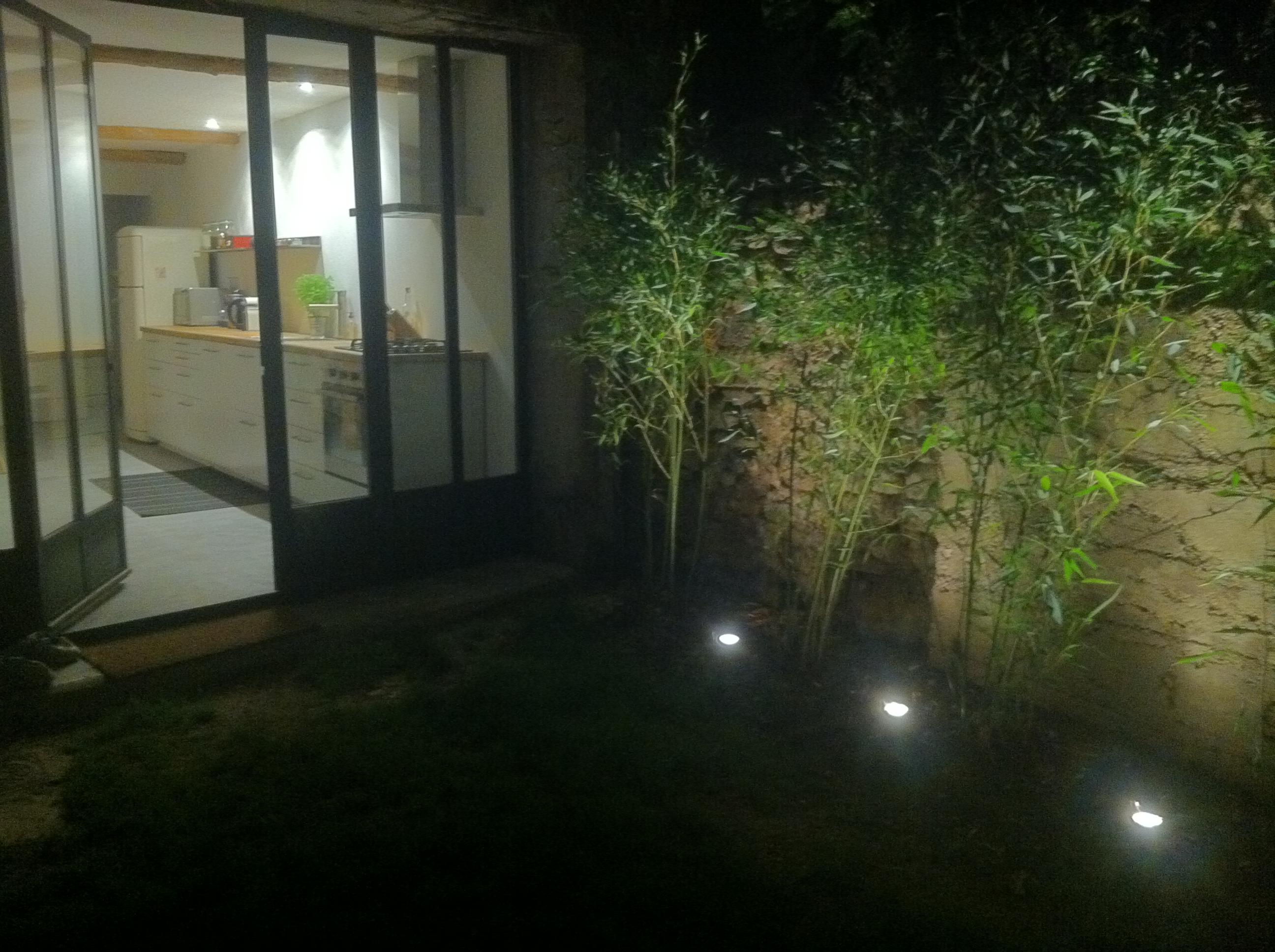 comment planter ses bambous dans les r gles de l 39 art sans. Black Bedroom Furniture Sets. Home Design Ideas